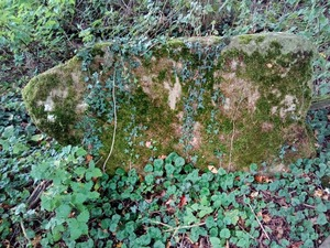 close-up photograph of a disused stone step stile covered in moss and ivy